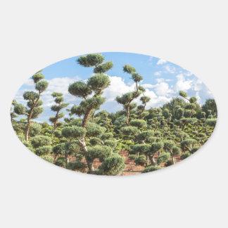 Adesivo Oval Formas bonitas do topiary nas coníferas
