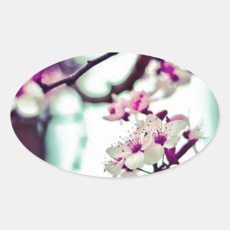 Adesivo Oval Foto Pastel da flor de cerejeira
