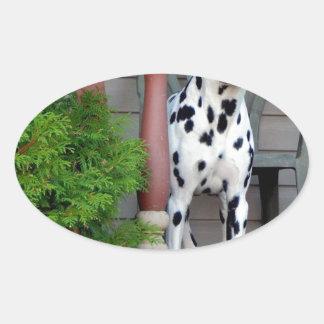 Adesivo Oval Kevin o Dalmatian