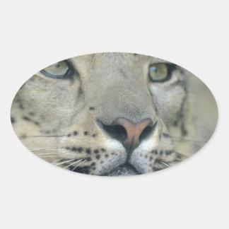 Adesivo Oval leopardo de neve