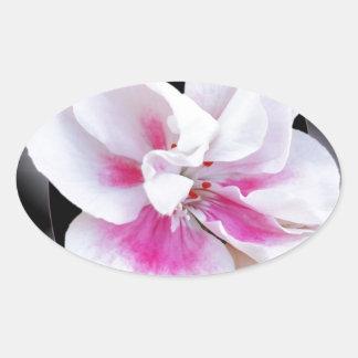 Adesivo Oval Máscaras cor-de-rosa