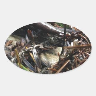 Adesivo Oval Não tropece o cogumelo