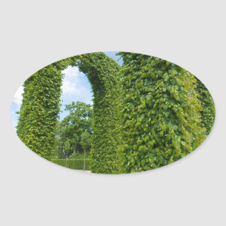 Adesivo Oval O verde deixa arcos