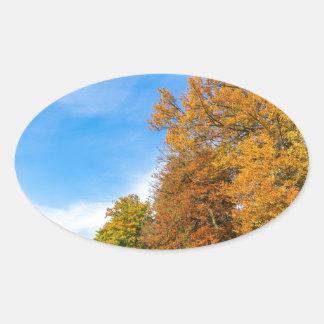 Adesivo Oval Paisagem colorida da queda com céu e prado das