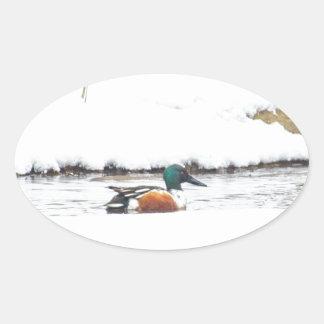 Adesivo Oval Pato do inverno