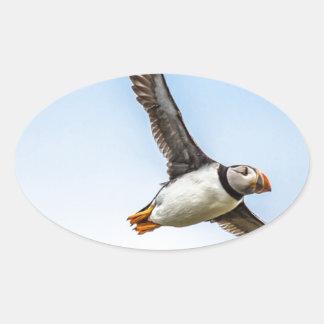 Adesivo Oval Pena da mosca dos animais selvagens do vôo do mar