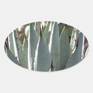 Adesivo Oval Pontos da agave