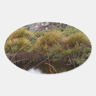 Adesivo Oval Reflexões enevoadas da manhã, Tasmânia, Austrália