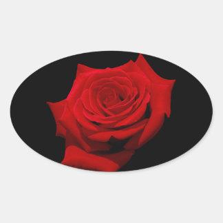 Adesivo Oval Rosa vermelha no fundo preto