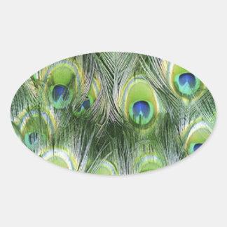 Adesivo Oval Teste padrão da pena do pavão
