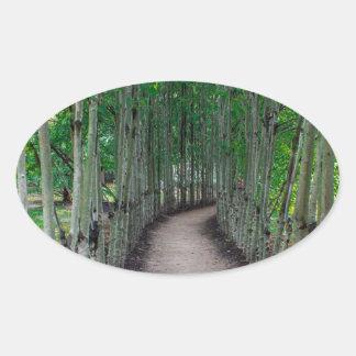 Adesivo Oval Trajeto do parque