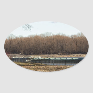 Adesivo Oval Vida do rio