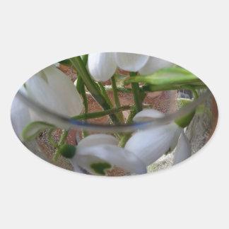 Adesivo Oval vidro dos snowdrops
