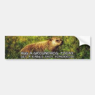 Adesivo Para Carro Abrace um groundhog hoje. Fique uma raiva