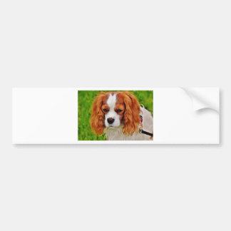 Adesivo Para Carro Animal de animal de estimação engraçado descuidado