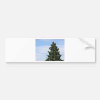 Adesivo Para Carro Árvore de abeto verde contra um céu claro