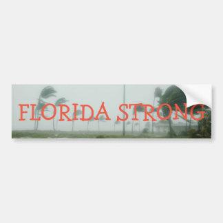 Adesivo Para Carro Autocolante no vidro traseiro forte de Florida