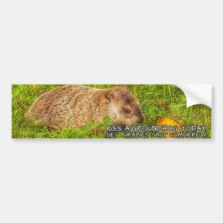 Adesivo Para Carro Beije um groundhog hoje. Obtenha uma etiqueta do