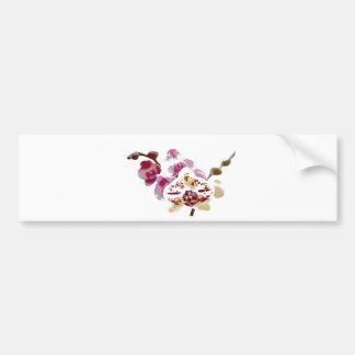 Adesivo Para Carro Buquê da flor da orquídea do Phalaenopsis