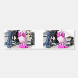 Adesivo Para Carro Caniche padrão cor-de-rosa do dia 2016 da caniche