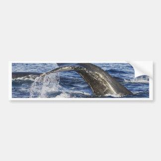 Adesivo Para Carro Cauda da baleia
