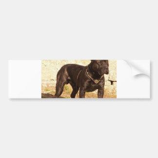 Adesivo Para Carro cheio do canerio de perro de pressa