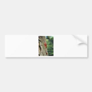 Adesivo Para Carro Close up da excreção da árvore de pera da resina