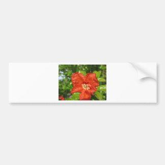 Adesivo Para Carro Close up da flor vermelha da romã