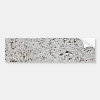 Adesivo Para Carro Close up fóssil da superfície do azulejo da