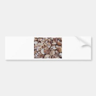 Adesivo Para Carro Cogumelos de Shiitake