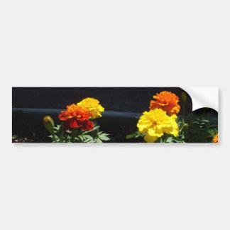 Adesivo Para Carro Cravos-de-defunto amarelos e alaranjados bonito