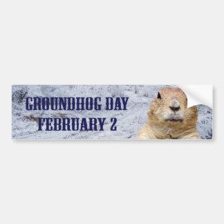 Adesivo Para Carro Dia de Groundhog
