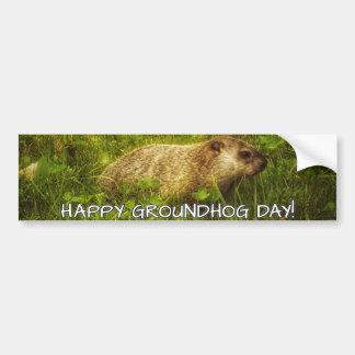 Adesivo Para Carro Dia de Groundhog feliz! autocolante no vidro