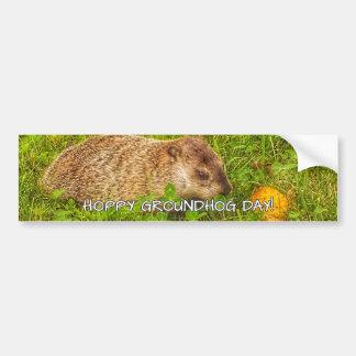 Adesivo Para Carro Dia de Groundhog Hoppy! autocolante no vidro