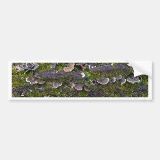 Adesivo Para Carro divertimento mossy do cogumelo