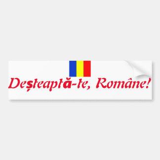 Adesivo Para Carro Divisa romena