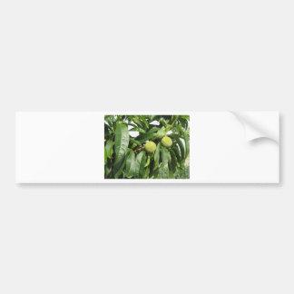 Adesivo Para Carro Dois pêssegos verdes unripe que penduram em uma