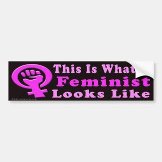 Adesivo Para Carro Este é um autocolante no vidro traseiro feminista