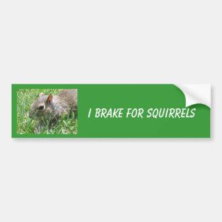 Adesivo Para Carro Eu travo para os esquilos que caracterizam o