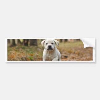 Adesivo Para Carro Filhote de cachorro de labrador retriever