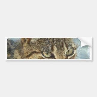 Adesivo Para Carro Fim impressionante do gato de gato malhado acima