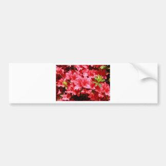 Adesivo Para Carro flores do vermelho da azálea