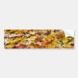 Adesivo Para Carro Folhas caídas da cor da queda nos parques mmoídos
