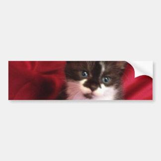 Adesivo Para Carro Foofy o gatinho com vermelho de veludo
