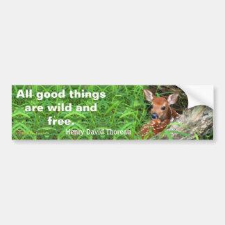 Adesivo Para Carro Foto de uma jovem corça e umas citações por