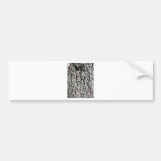 Adesivo Para Carro Fundo da textura do latido de árvore da pera