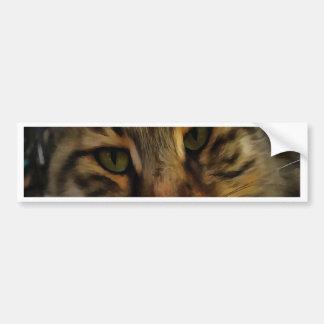 Adesivo Para Carro Gato curioso
