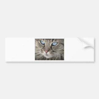 Adesivo Para Carro Gato de tigre animal dos olhos de gato do retrato