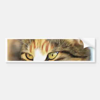 Adesivo Para Carro Gato satisfeito