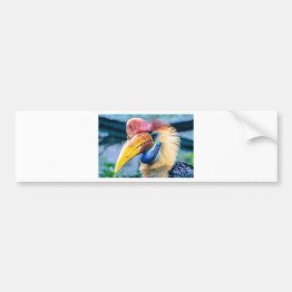 Adesivo Para Carro Hornbill vermelho e amarelo